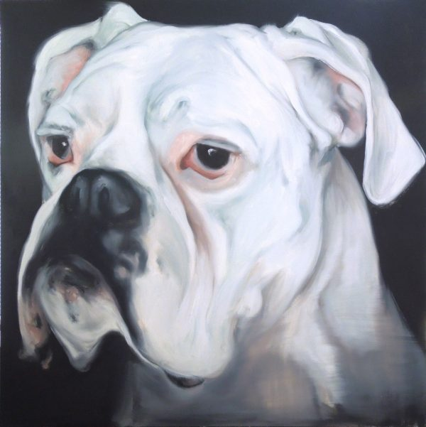 Head and neck portrait in oil of a white mastiff dog